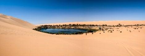 Oasis de Fezzan en el Sahara