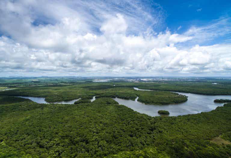 Las grandes cuencas hidrográficas del planeta