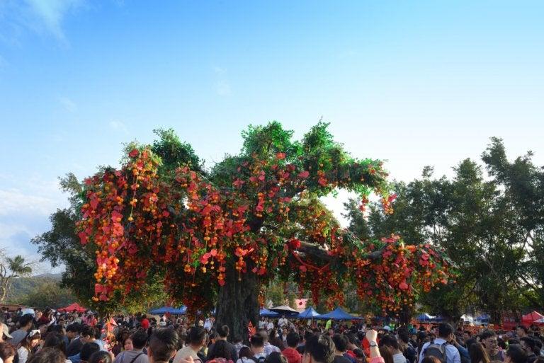 Lam Tsuen y sus árboles de los deseos