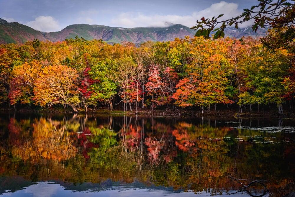 Parque Nacional de Shiretoko en otoño