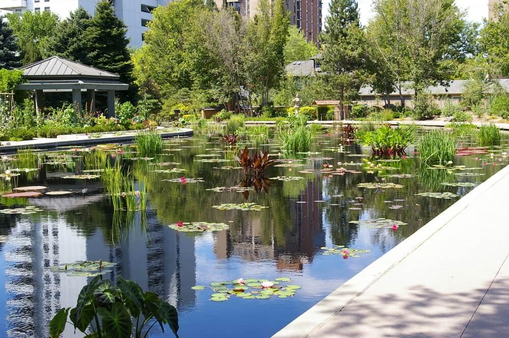 Denver Botanic Gardens, uno de los mejores jardines botánicos del mundo