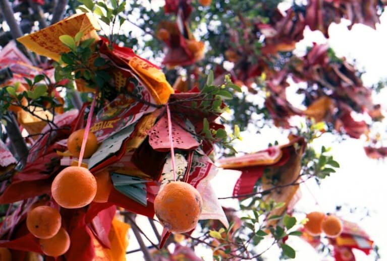 Deseos colgados de los árboles de Lam Tsuen