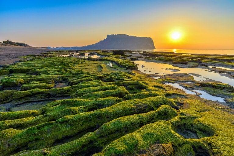 La isla Jeju, una de las maravillas naturales