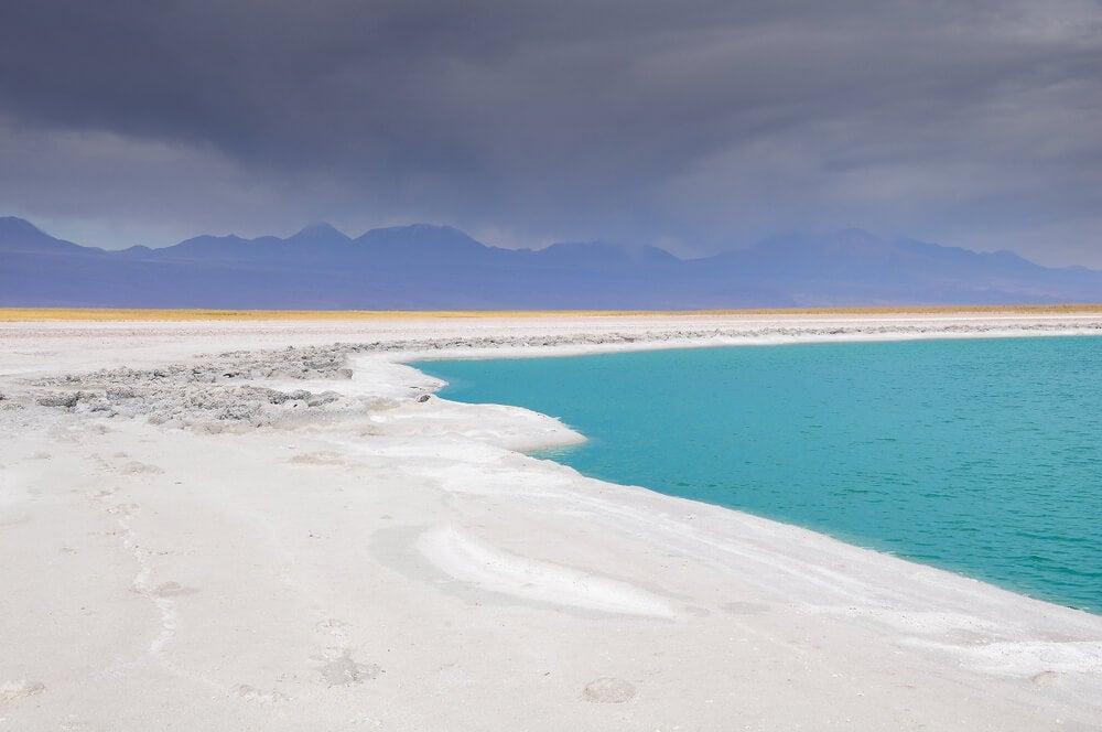 La laguna Cejar y su hermosa diversidad de paisajes