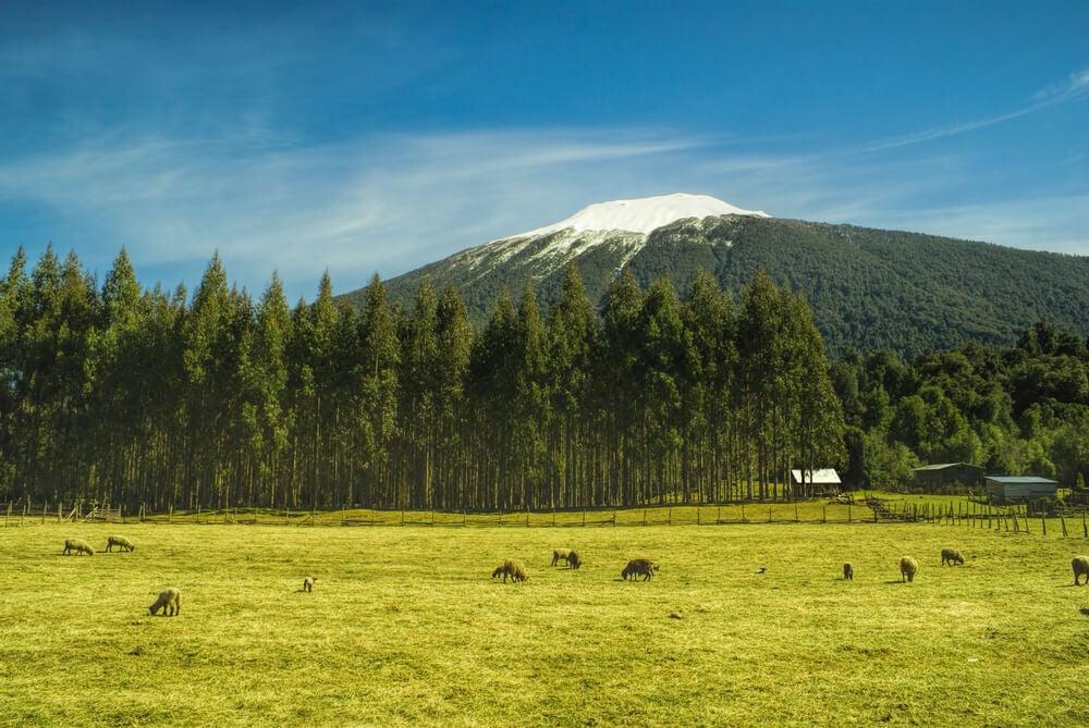 Paisaje del Parque Nacional Hornopirén