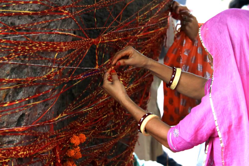 Ofrenda en el árbol Kalpavriksha