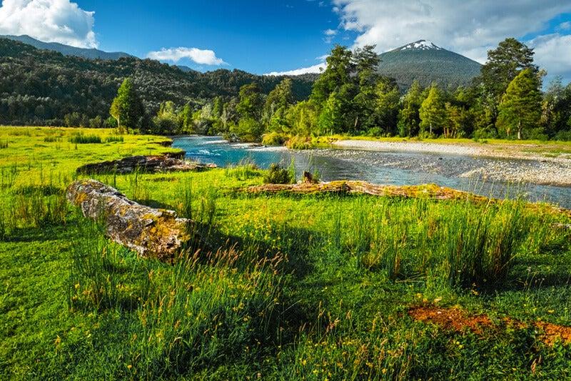 Parque Nacional Hornopirén: conoce un sitio paradisíaco