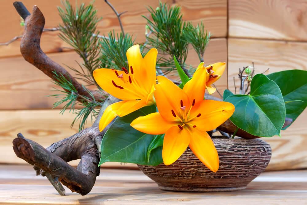 Muestra de ikebana