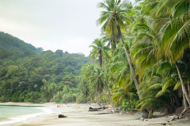 Isla Gorgona en Colombia, de prisión a paraíso