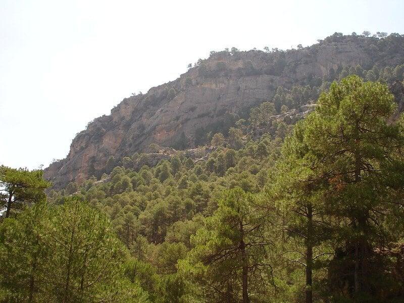Sortados en la sierra de Pozo Alcón