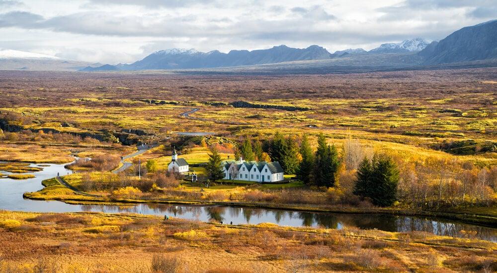 El largo camino de Islandia hacia la reforestación