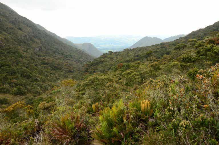 El encanto del Santuario de Iguaque en Colombia