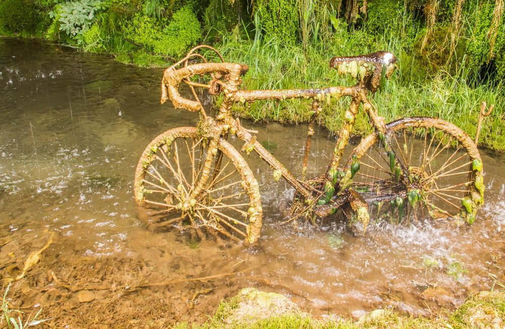 Bicicleta petrificada