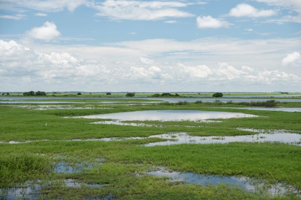 Complejo lagunas en Ciénaga Grande de Santa Marta
