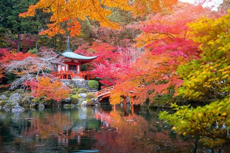 Disfrutando del 'momiji', el paisaje de otoño japonés