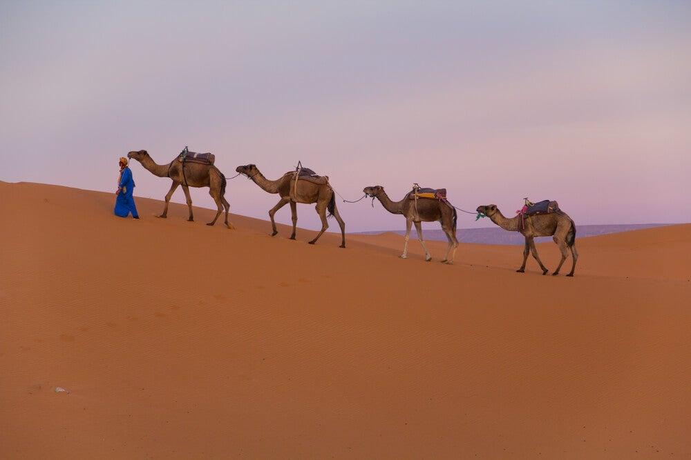 Tuareg en el desierto
