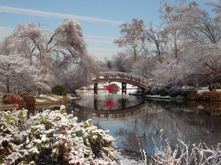 Japón en invierno: qué ver o hacer y otros consejos