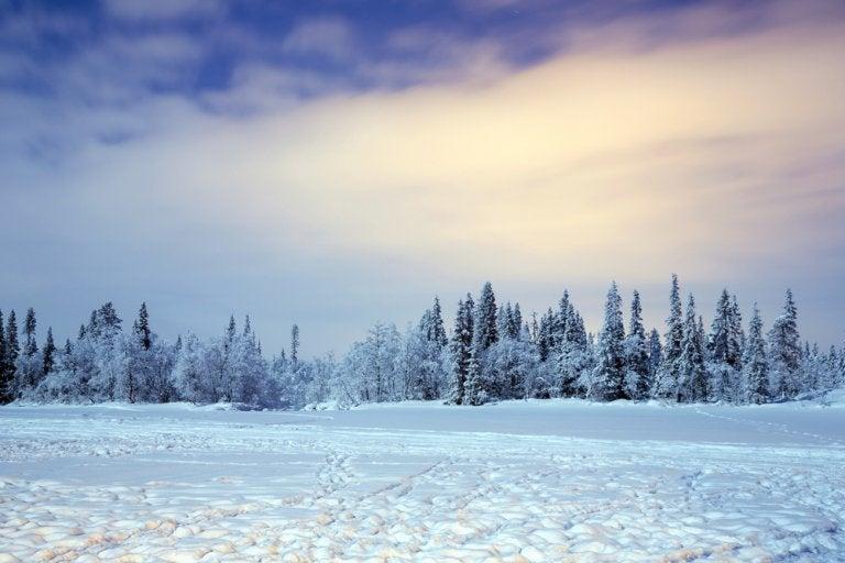 Actividades de invierno en la Laponia sueca