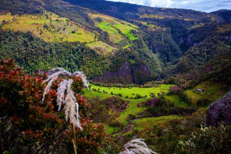El Parque Nacional Puracé, un sitio de altura