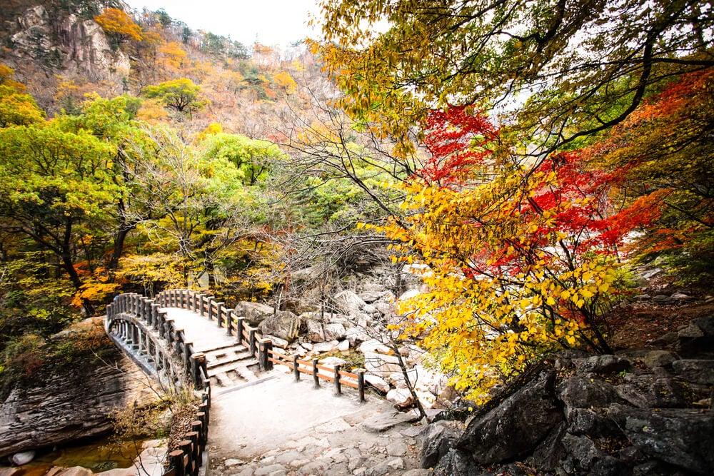 Paisaje del Parque Nacional Seoraksan