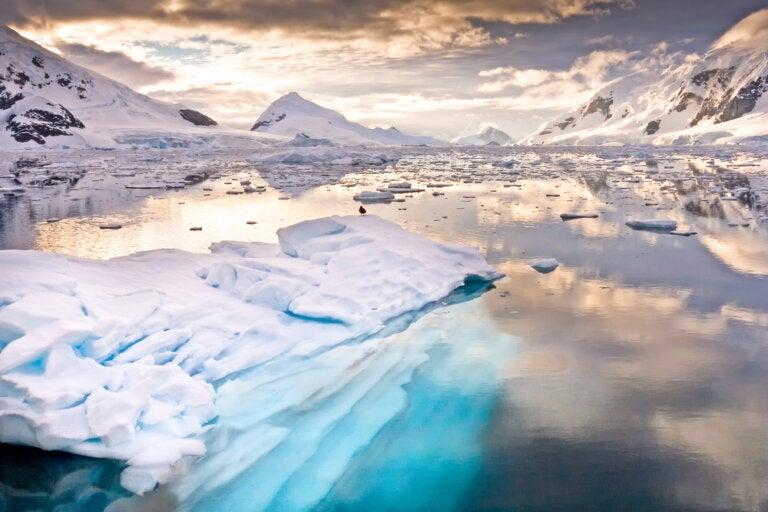 La Antártida, un magnífico lugar por descubrir