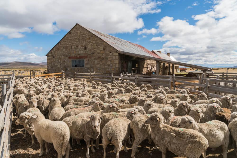 Estancia en la Patagonia