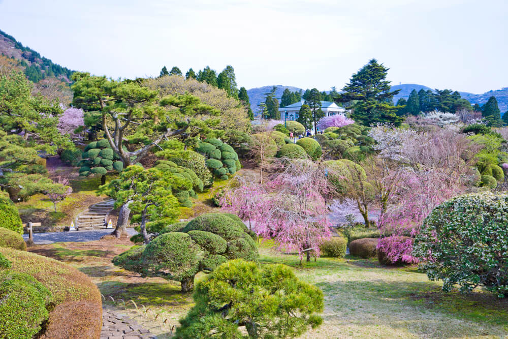 Jardines del palacio de Hakone