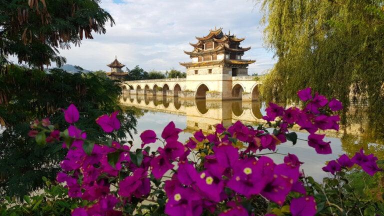 6 puentes fabulosos que vale la pena conocer