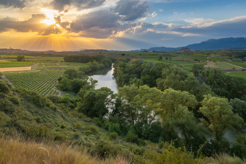 Río Ebro y viñedos