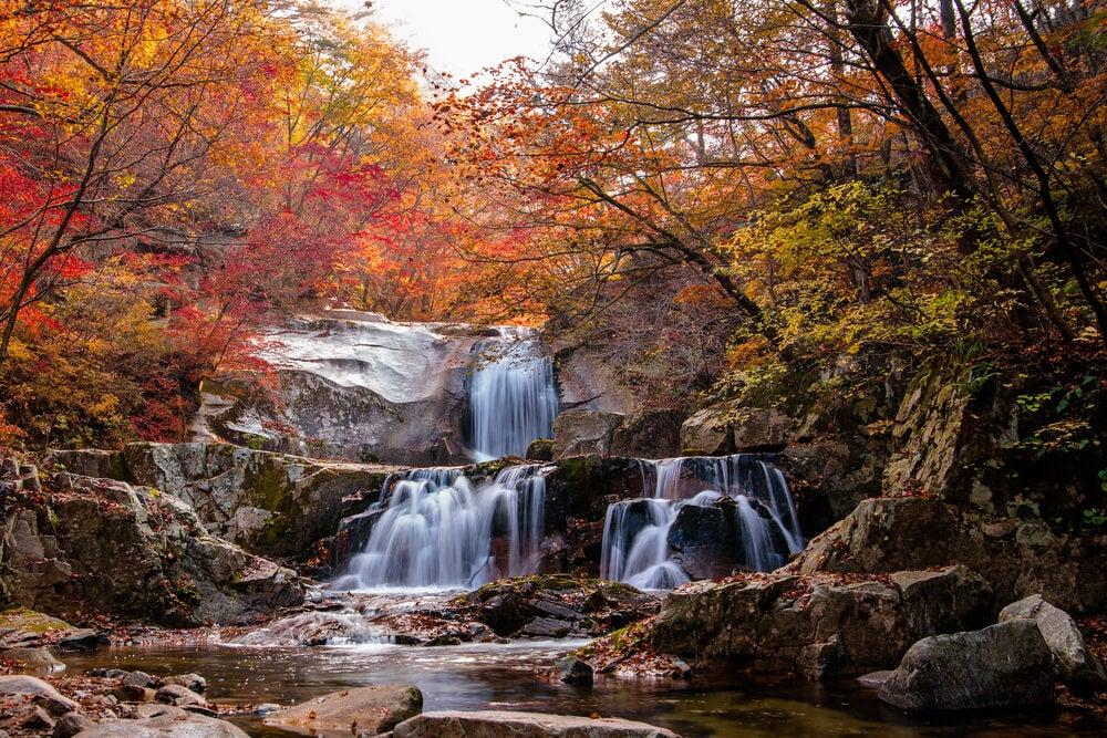 Descubre los tesoros de Gangwon-do en Corea