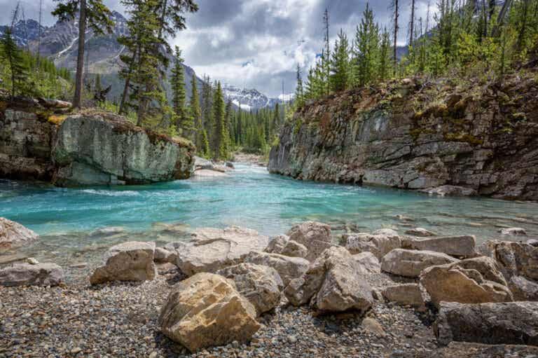 Atractivos de la Columbia Británica en Canadá