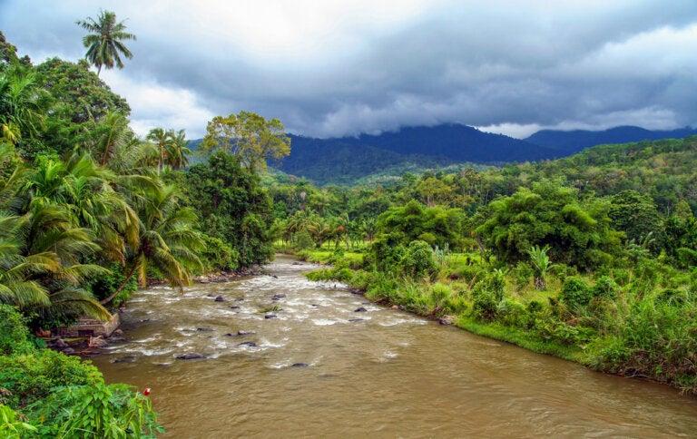 Sumatra: un destino para los más aventureros
