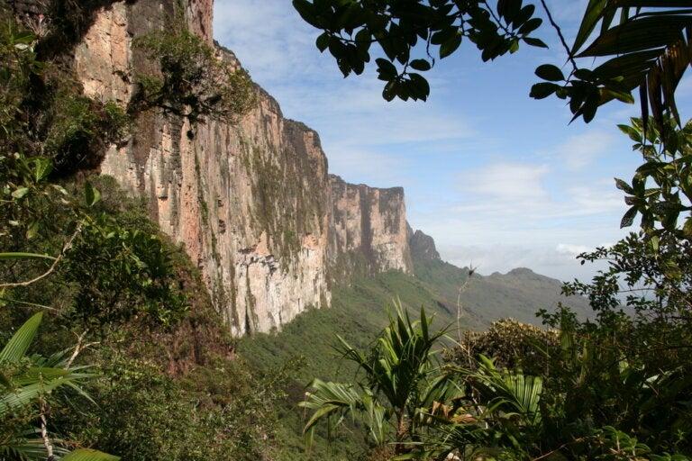 Descubre el Parque Nacional del Monte Roraima