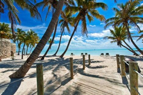 Playa en Cayo Hueso