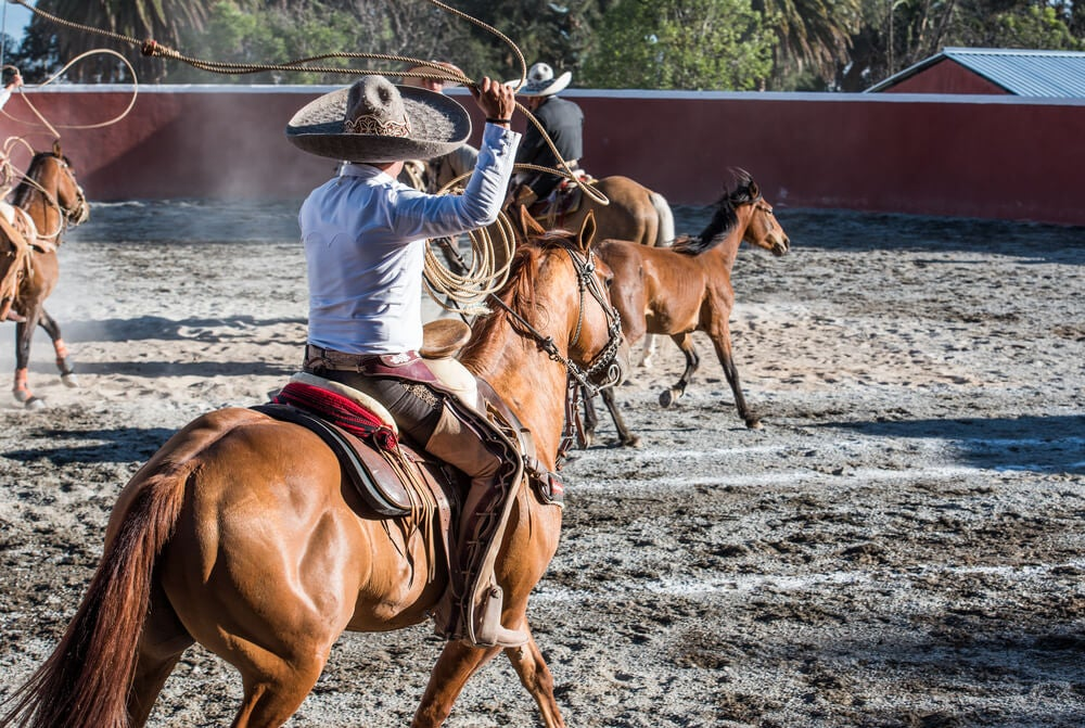 Rodeo en México
