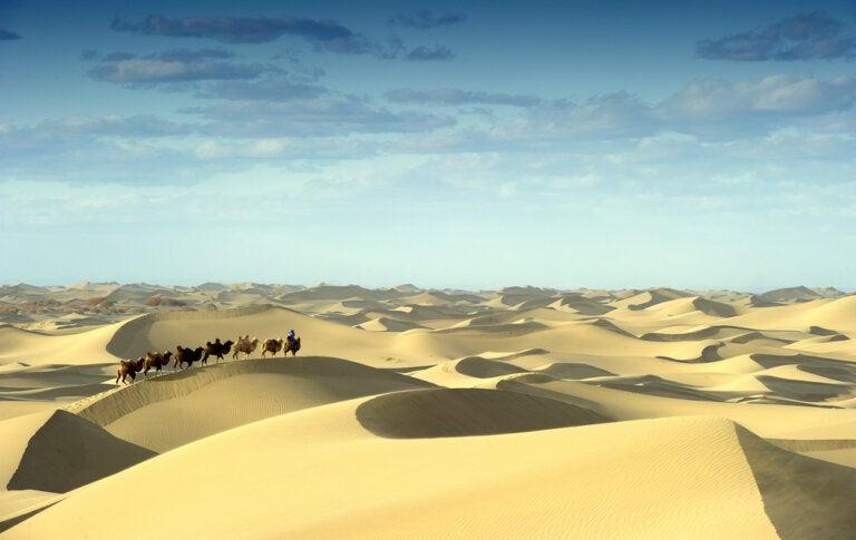 Lecturas en tiempos de aislamiento: Marco Polo, el gran viajero