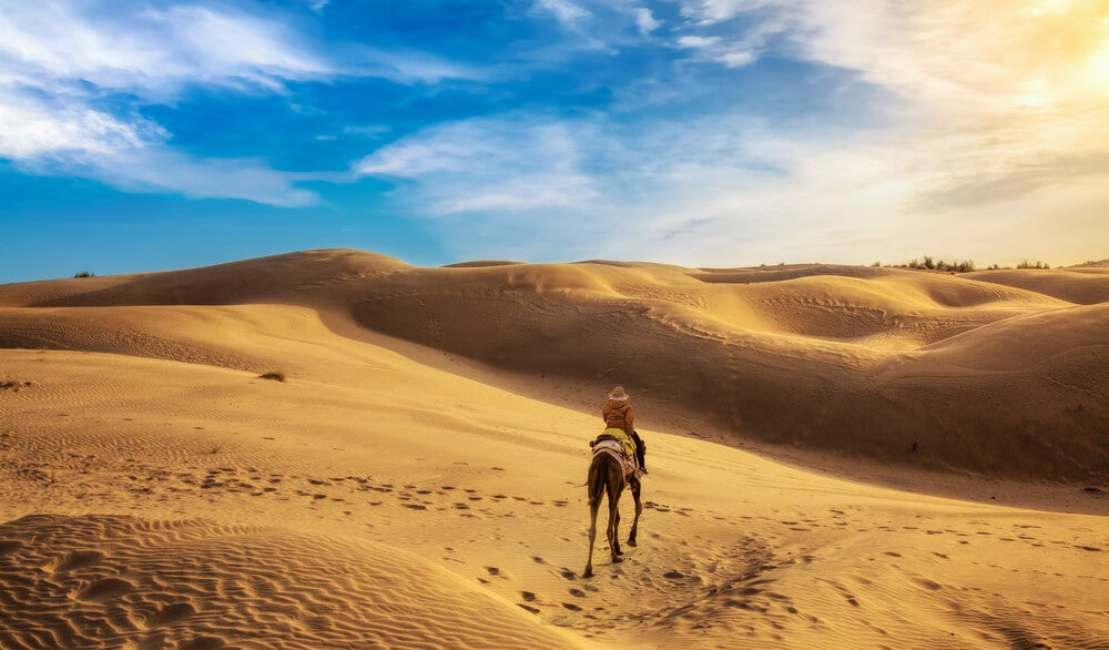 Desierto de Thar