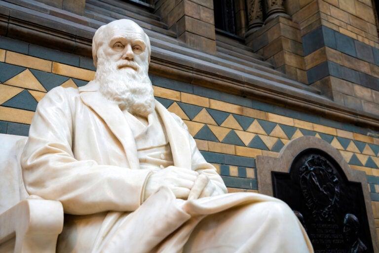 Viaje y ciencia: Charles Darwin y sus investigaciones