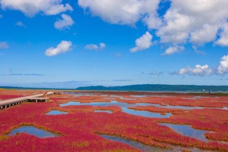 Vista aérea de la playa roja