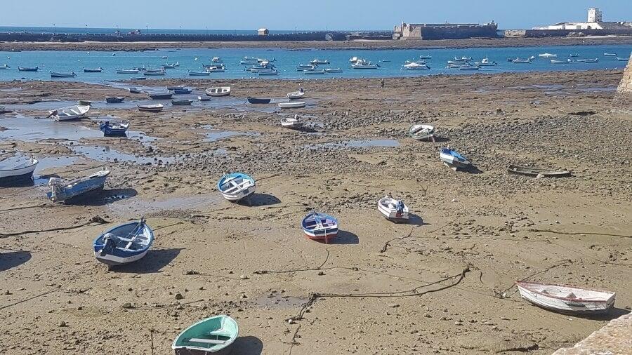 Barcas caleteras