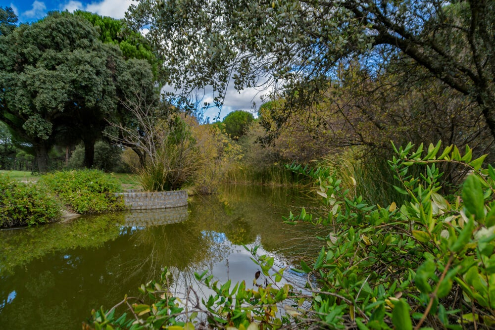 El canal del Guadarrama, la historia que nunca se escribió