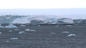 ¡Tierra a la vista! Nueva isla surge en la Antártida