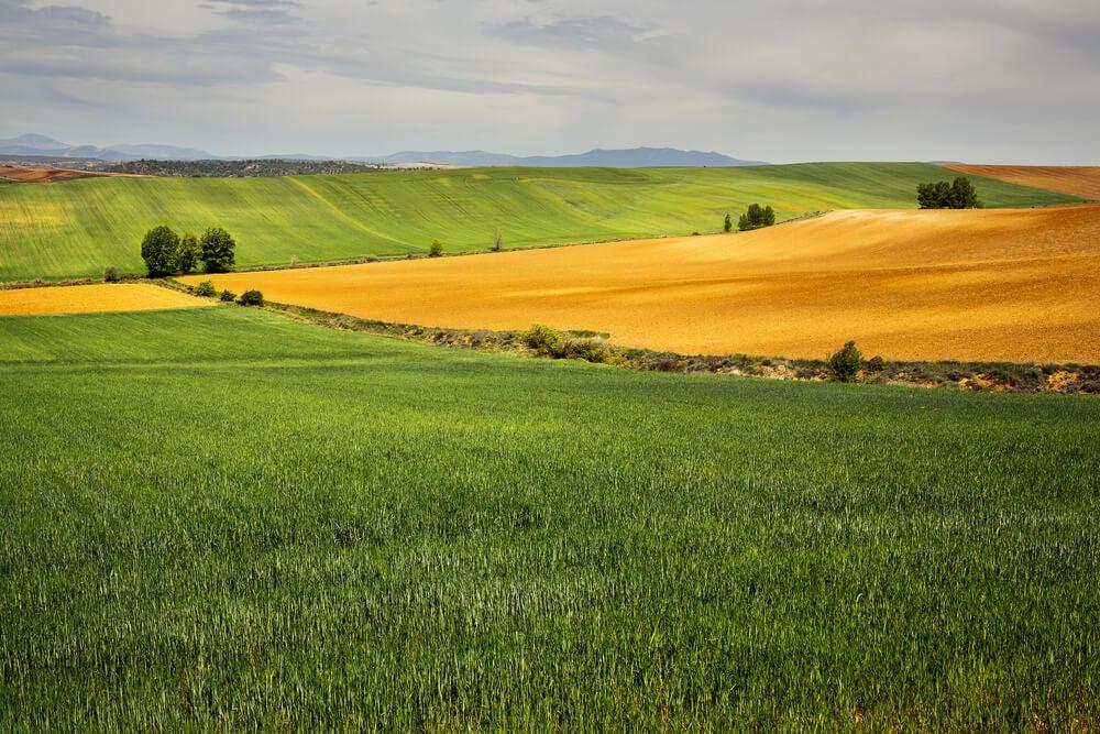 Paisaje en La Mancha, España.