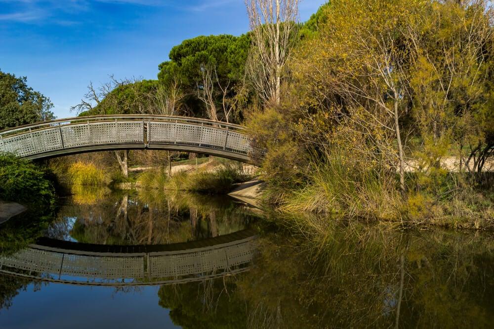 Restos del Canal del Guadarrama