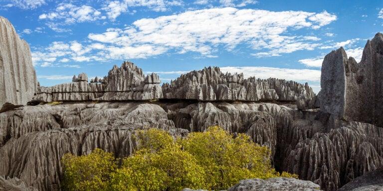 Tsingy de Bemaraha: una fabulosa reserva natural