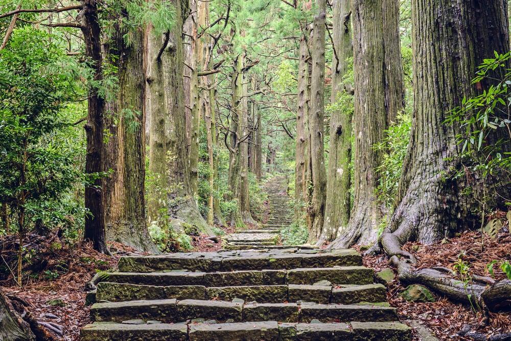 Kumano Kodo, una ruta de peregrinación de Japón