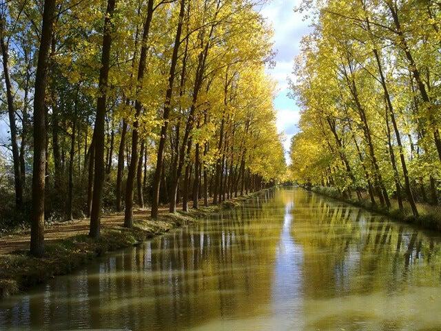 El recorrido del Canal de Castilla entre Valladolid y Palencia.