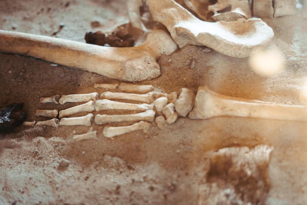 En la Sierra de Atapuerca se encontraron diversos fósiles humanos de mucho valor.