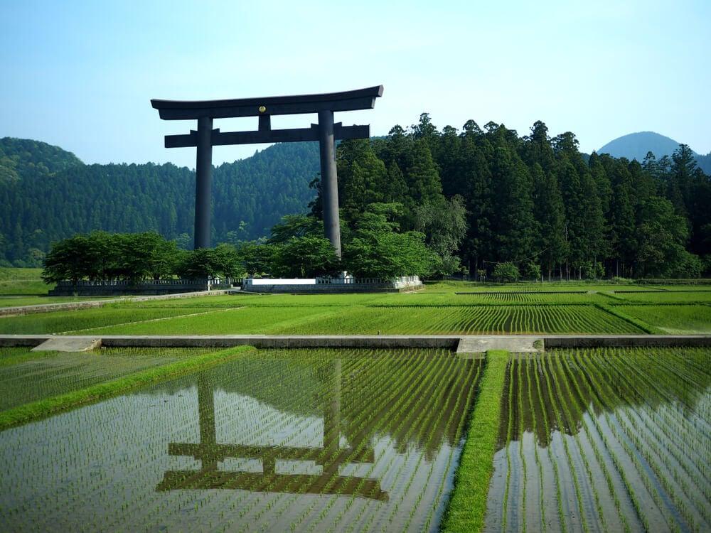 El santuario Hongu Taisha posee el torii más grande del mundo.