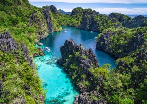El Nido, en Filipinas, encierra una gran fauna marina.